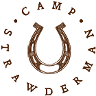 icon_horseshoe1